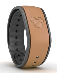 brown-magicband