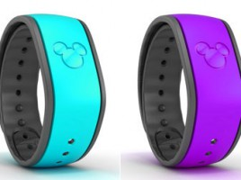 January 2015 Disney Magicband Mymagic And Fastpass