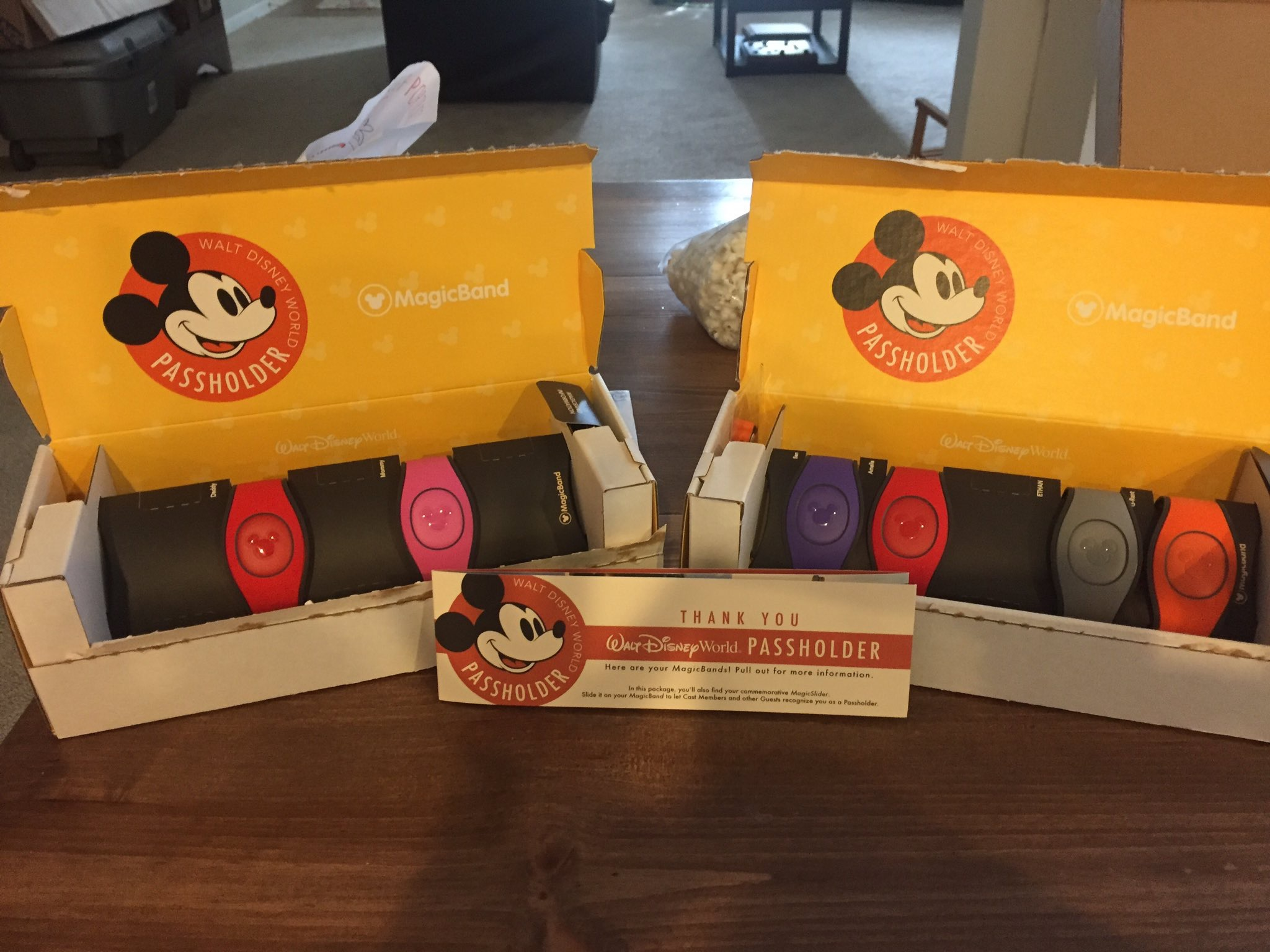 ... (Elastigirl) on it was released to the public very briefly with the original MagicBand (and maybe even briefer for MagicBand 2). This box is actually ...